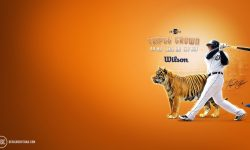 Detroit Tigers widescreen wallpapers