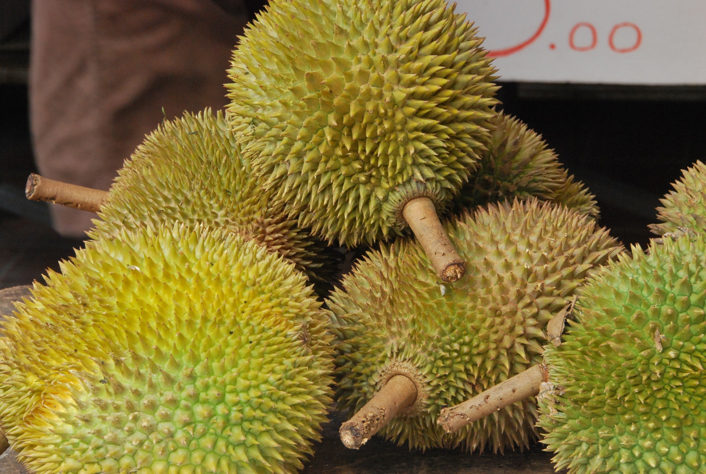 Durian Backgrounds