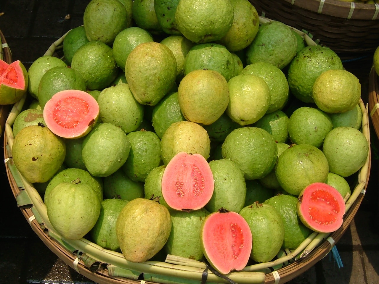 Guava full hd wallpapers