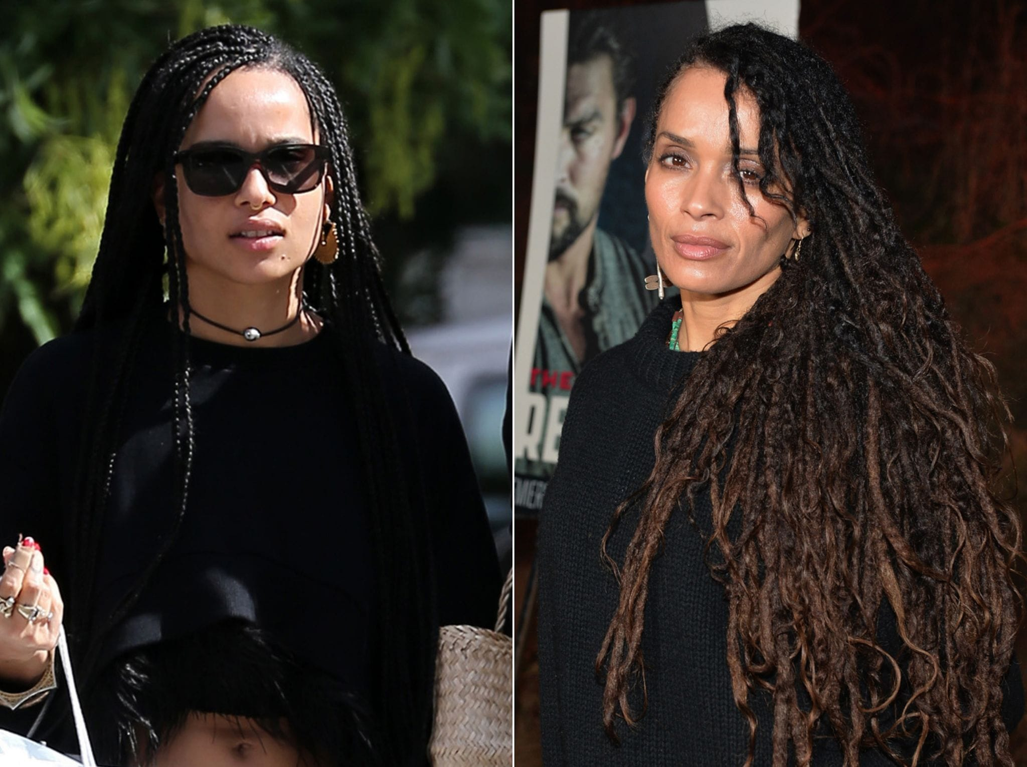 Lisa Bonet Backgrounds