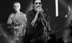 Placebo Backgrounds