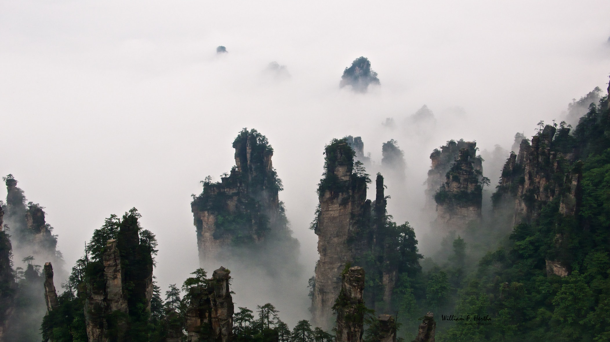 Tianzi Mountain Backgrounds