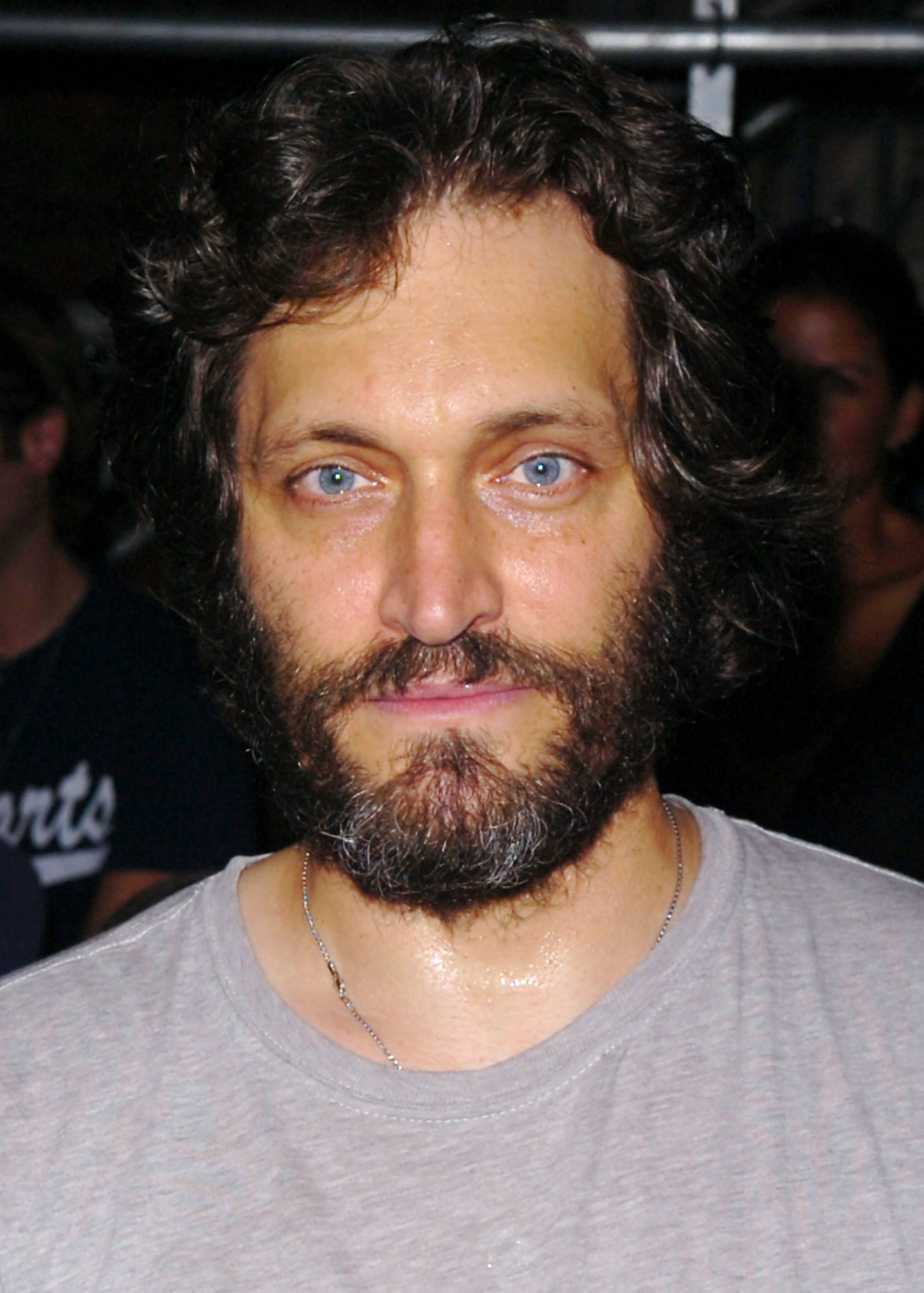 Vincent Gallo Backgrounds