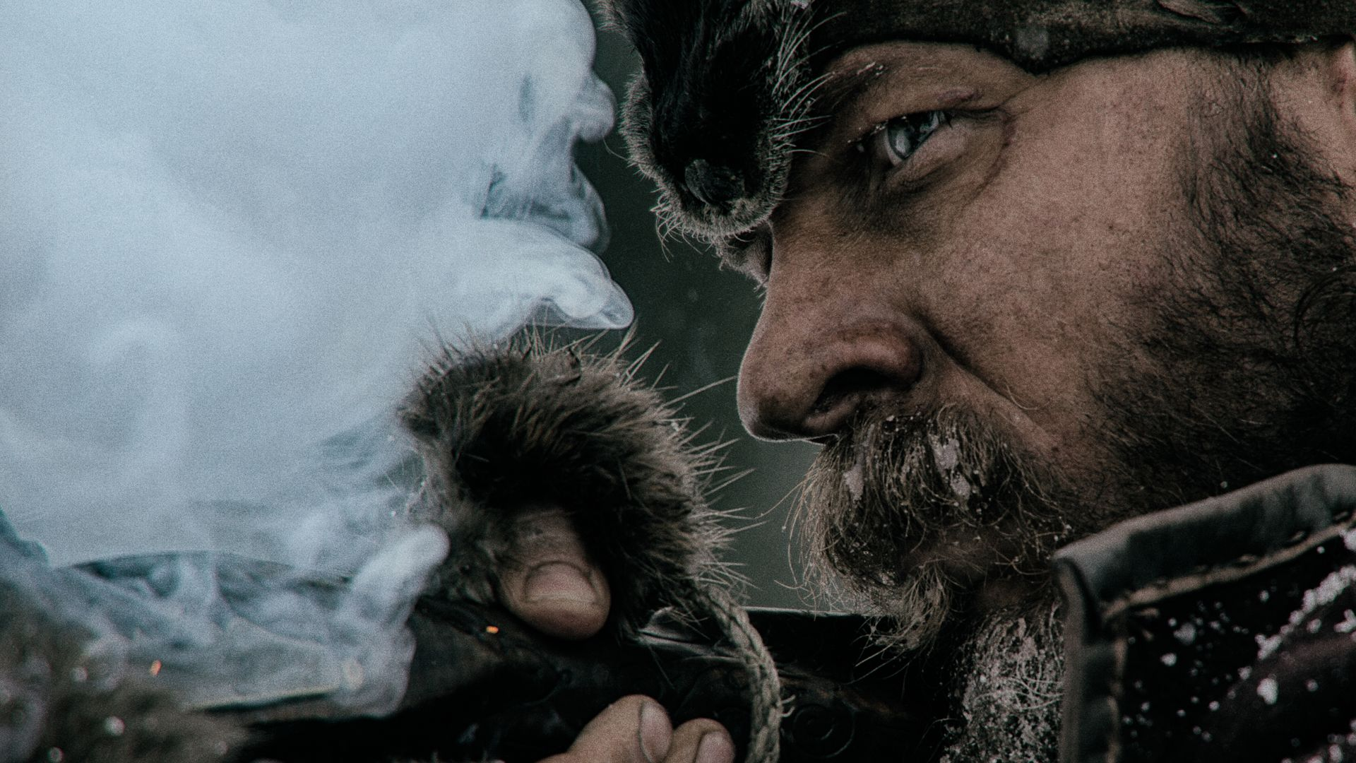 The Revenant widescreen wallpapers
