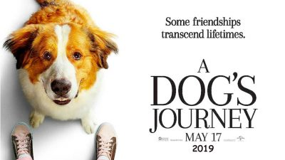 A Dog's Journey widescreen wallpapers