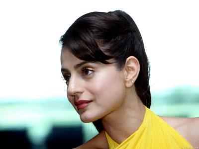Amisha Patel HD pictures