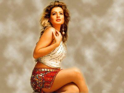 Amisha Patel Backgrounds