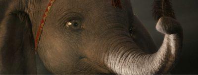Dumbo Wallpapers