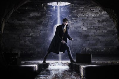 Fantastic Beasts: The Crimes of Grindelwald Screensavers