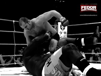 Fedor Emelianenko High