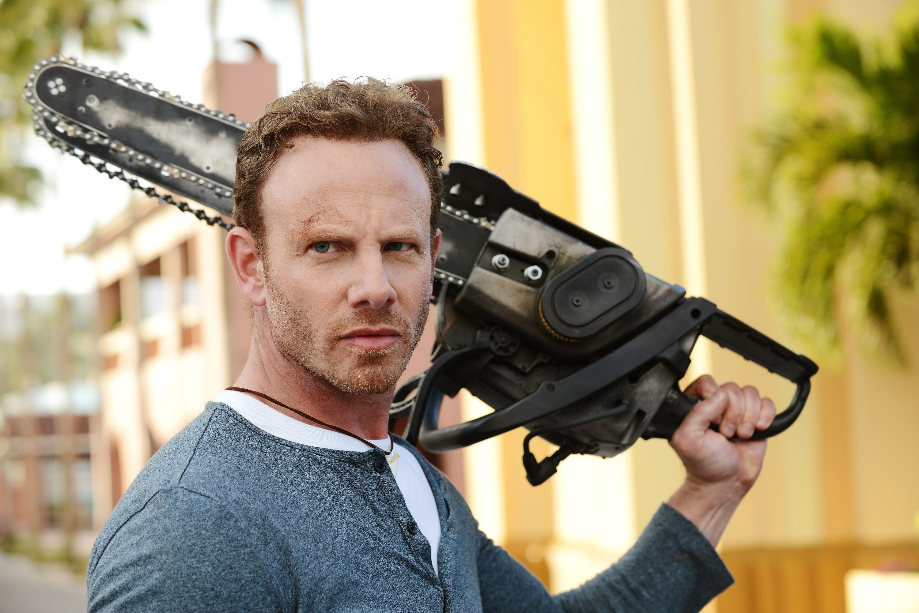 Ian Ziering Wallpapers
