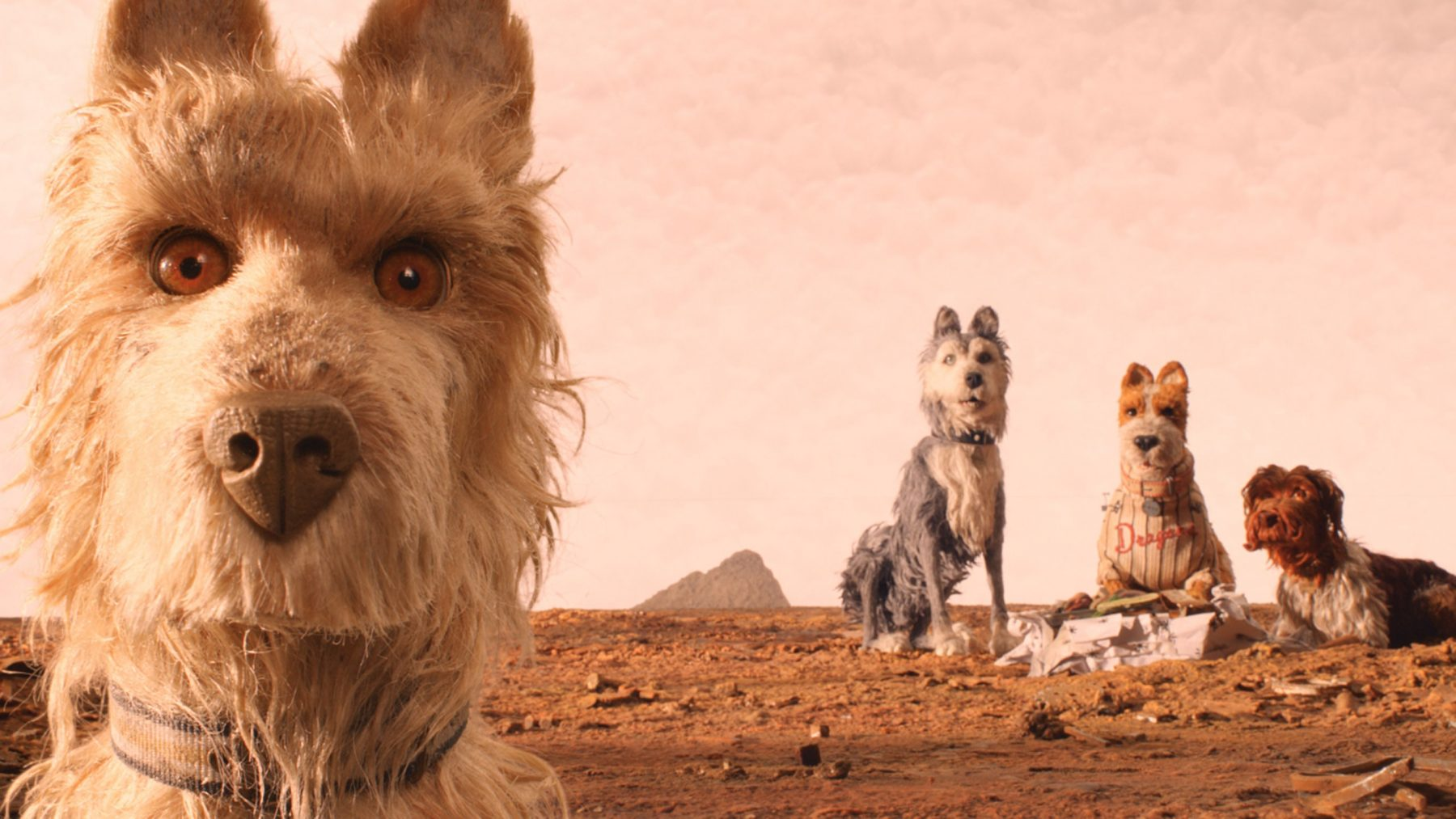 Isle Of Dogs HD Pictures Wallpaper