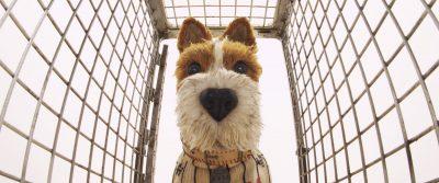 Isle of Dogs Screensavers