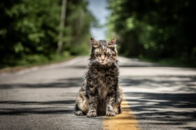Pet Sematary Pictures