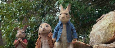 Peter Rabbit Widescreen for desktop