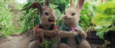Peter Rabbit Download