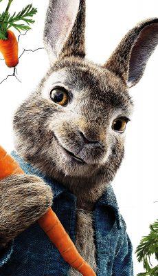 Peter Rabbit HD pics