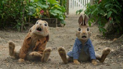 Peter Rabbit Background