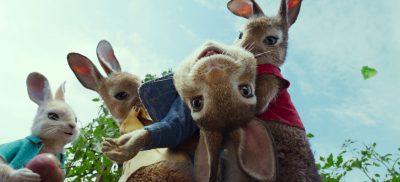 Peter Rabbit Screensavers