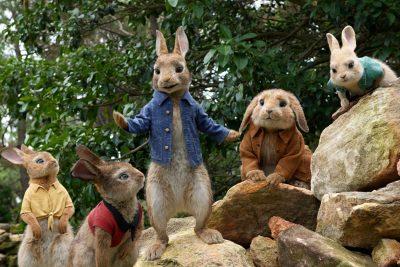 Peter Rabbit Wallpaper