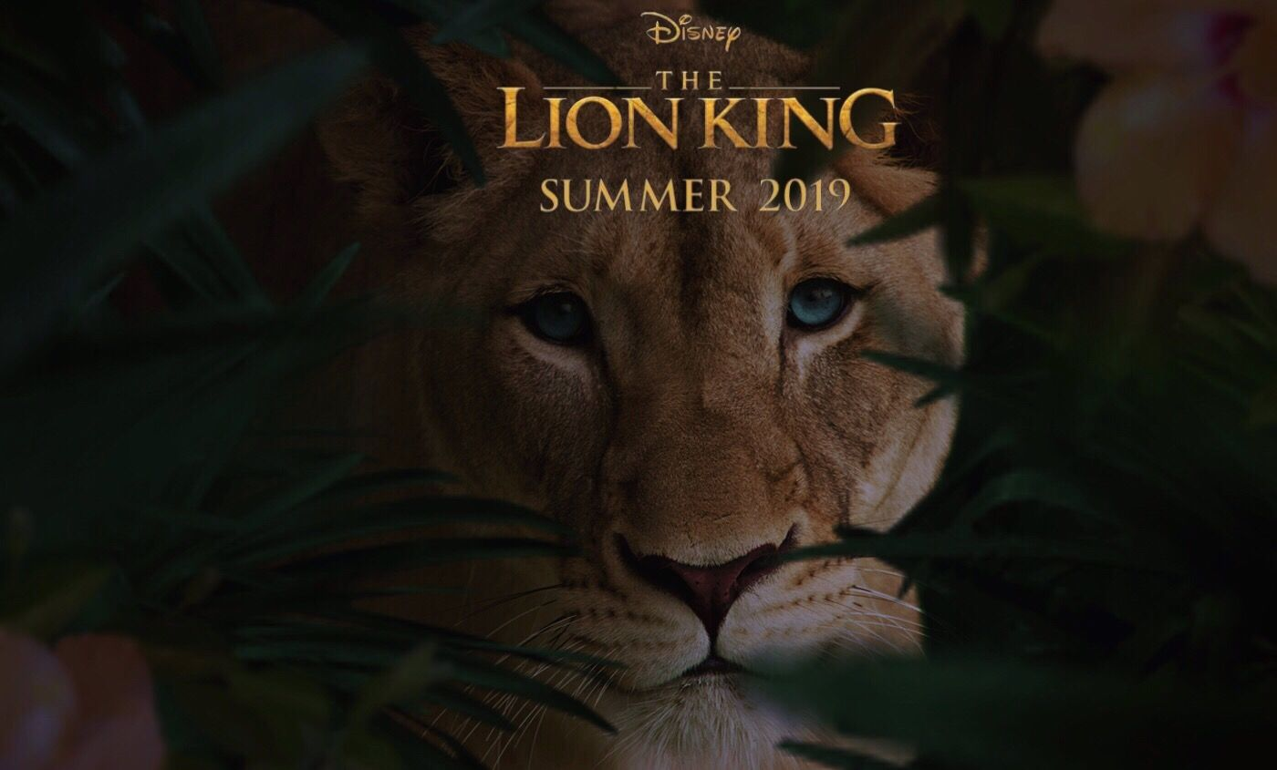 The Lion King Hd Wallpapers 7wallpapers Net