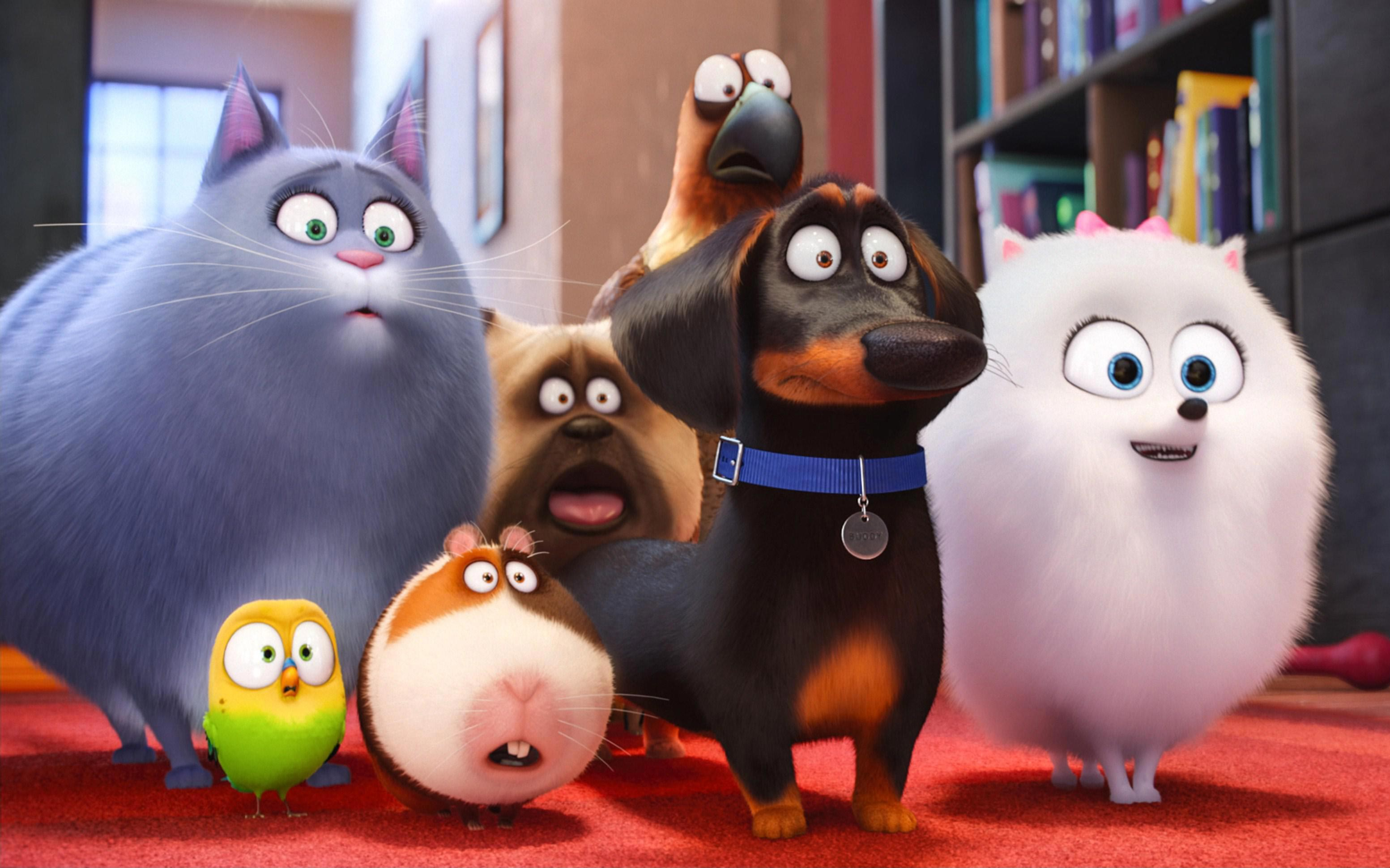The Secret Life of Pets 2 HD Wallpapers | 7wallpapers.net