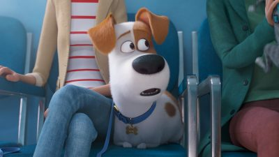The Secret Life of Pets 2 Backgrounds