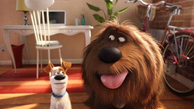 The Secret Life of Pets 2 Download