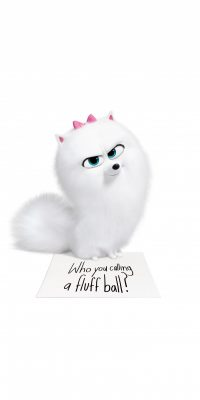 The Secret Life of Pets 2 Android wallpapers