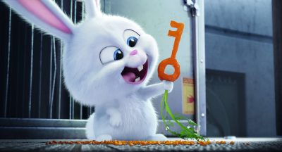 The Secret Life of Pets 2 HD pictures