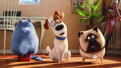 The Secret Life of Pets 2 PC wallpapers