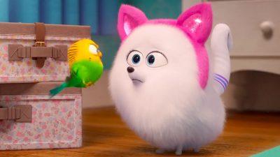 The Secret Life of Pets 2 Funny