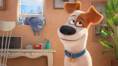 The Secret Life of Pets 2 Full hd wallpapers